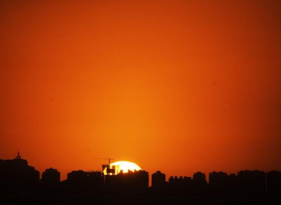 Energia y Felicidad – Naranjas