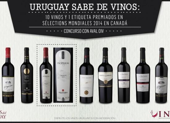 Nuestros vinos siguen siendo premiados
