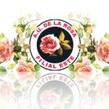 Exposición de rosas
