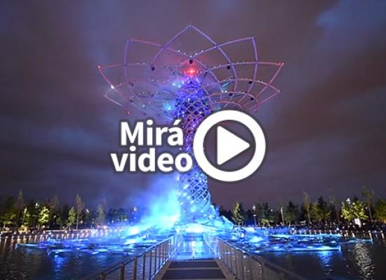 Expo Milán 2015 – El árbol del la vida