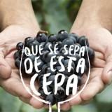 LA SEMANA DEL TANNAT EN URUGUAY