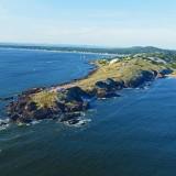 Punta Ballena natural y exótica: Unión Vecinal busca preservar vegetación nativa
