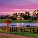 Haras Premium y alojamiento de lujo: la naturaleza a caballo