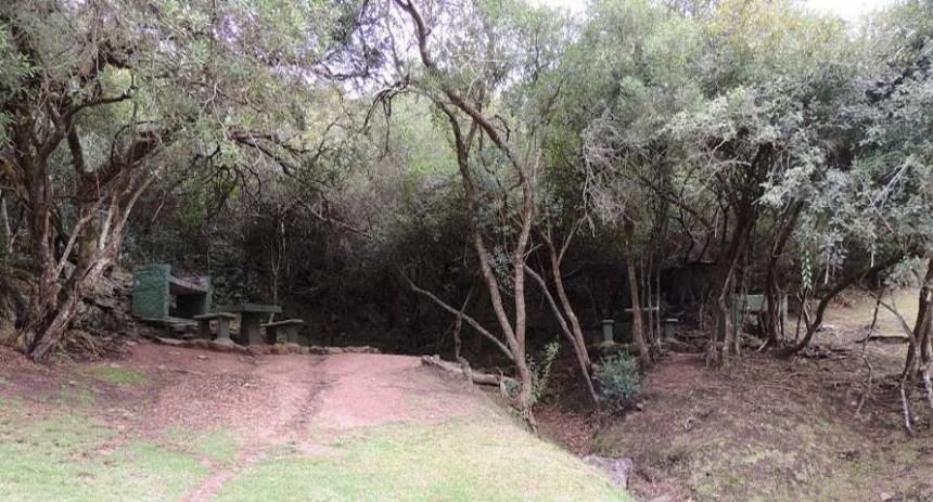 La zona está rodeada de abundante y cautivante vegetación