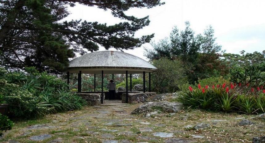 Arboretum Lussich, un espacio ideal para recorrer en bici, admirar vistas privilegiadas de Punta del Este, o simplemente para un paseo entre una gran población de árboles de muy variadas especies.