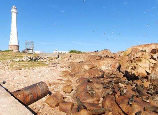 Isla Gorriti e Isla de Lobos: buscan destacar su valor patrimonial, turístico e histórico